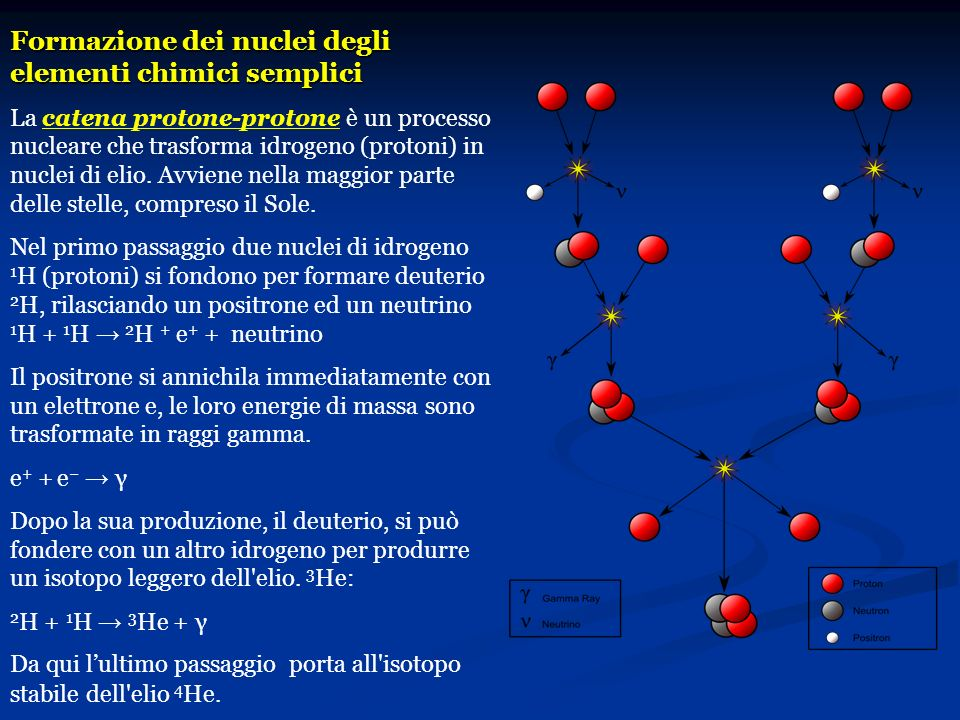 Formazione dei nuclei degli elementi chimici semplici La catena protone-protone è un processo nucleare che trasforma idrogeno (protoni) in nuclei di e