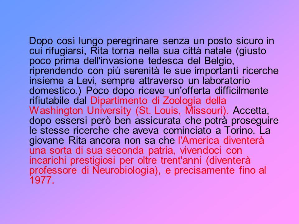 Rita Levi-Montalcini era però consapevole della rivoluzione scientifica che aveva investito il cervello e il sistema nervoso e che si era verificata anche grazie allo studio di quei fattori di crescita che intervengono sullo sviluppo e sulle funzioni nervose, non ultime quelle cognitive, come hanno dimostrato una serie di ricerche volte a dimostrare un ruolo del Nerve Growth Factor sulla funzione della corteccia cerebrale.