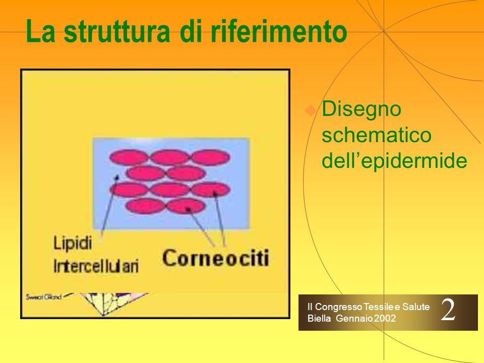II Congresso Tessile e Salute Biella Gennaio 2002 La struttura di riferimento Disegno schematico dellepidermide 2
