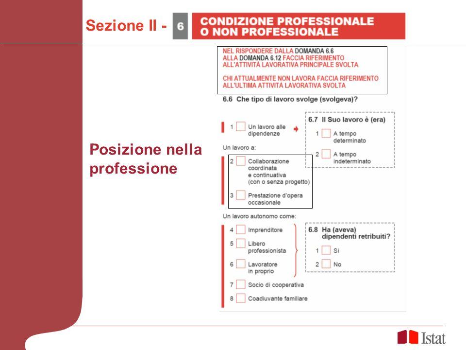 Sezione II - Posizione nella professione