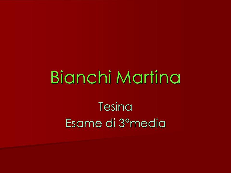 Bianchi Martina Tesina Esame di 3°media