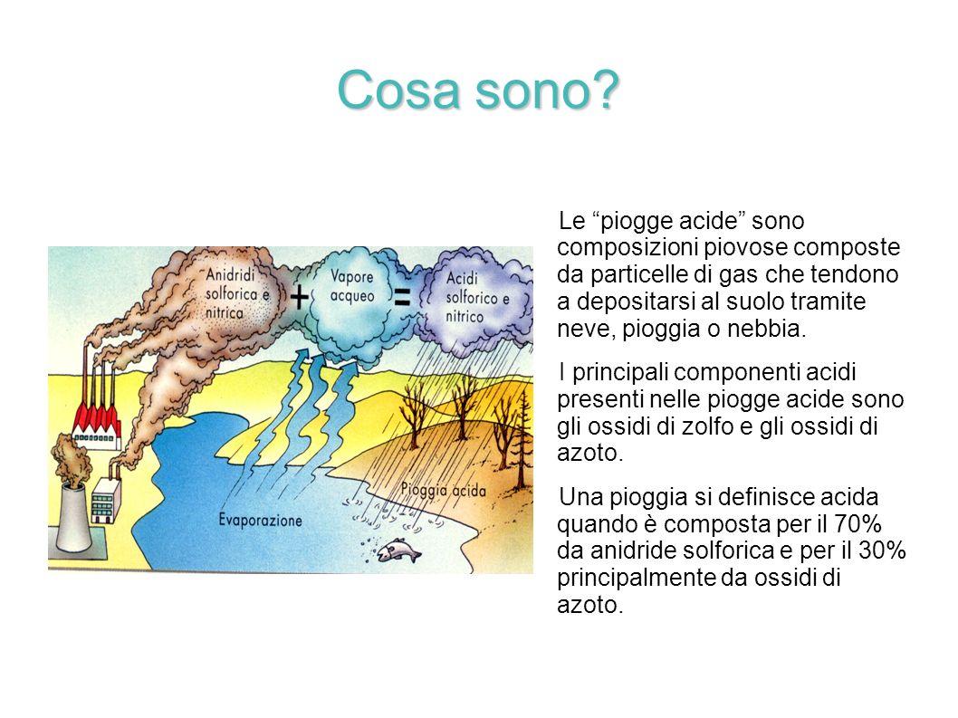 Cosa sono? Le piogge acide sono composizioni piovose composte da particelle di gas che tendono a depositarsi al suolo tramite neve, pioggia o nebbia.