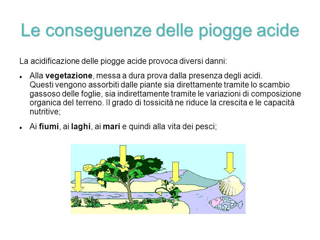 Le conseguenze delle piogge acide La acidificazione delle piogge acide provoca diversi danni: Alla vegetazione, messa a dura prova dalla presenza degl