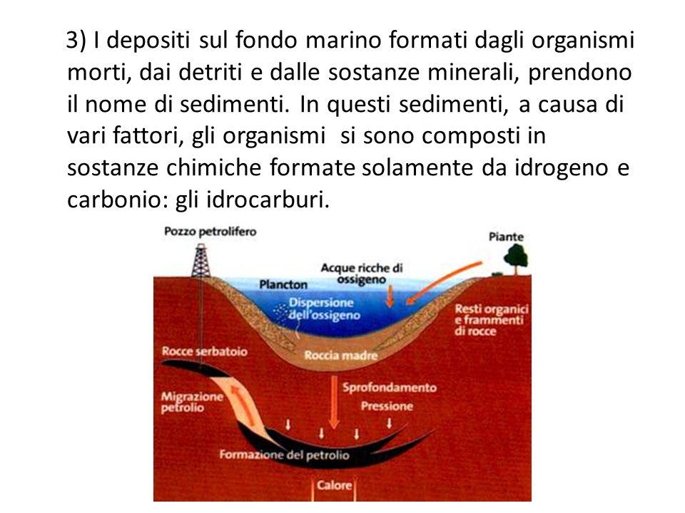 3) I depositi sul fondo marino formati dagli organismi morti, dai detriti e dalle sostanze minerali, prendono il nome di sedimenti. In questi sediment