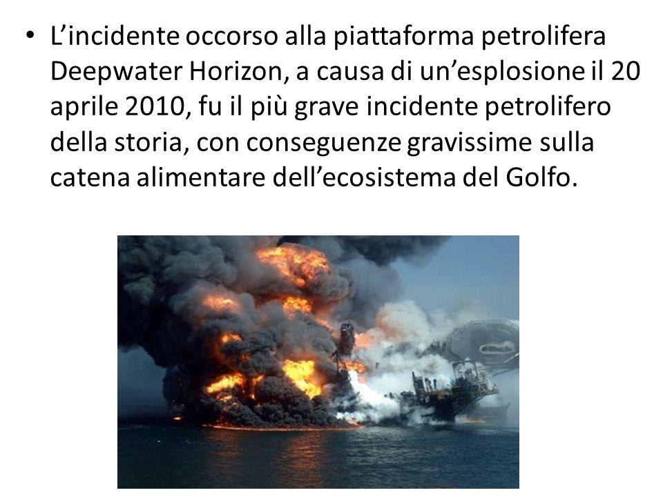 Lincidente occorso alla piattaforma petrolifera Deepwater Horizon, a causa di unesplosione il 20 aprile 2010, fu il più grave incidente petrolifero de