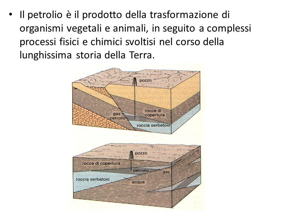 Il petrolio è il prodotto della trasformazione di organismi vegetali e animali, in seguito a complessi processi fisici e chimici svoltisi nel corso de
