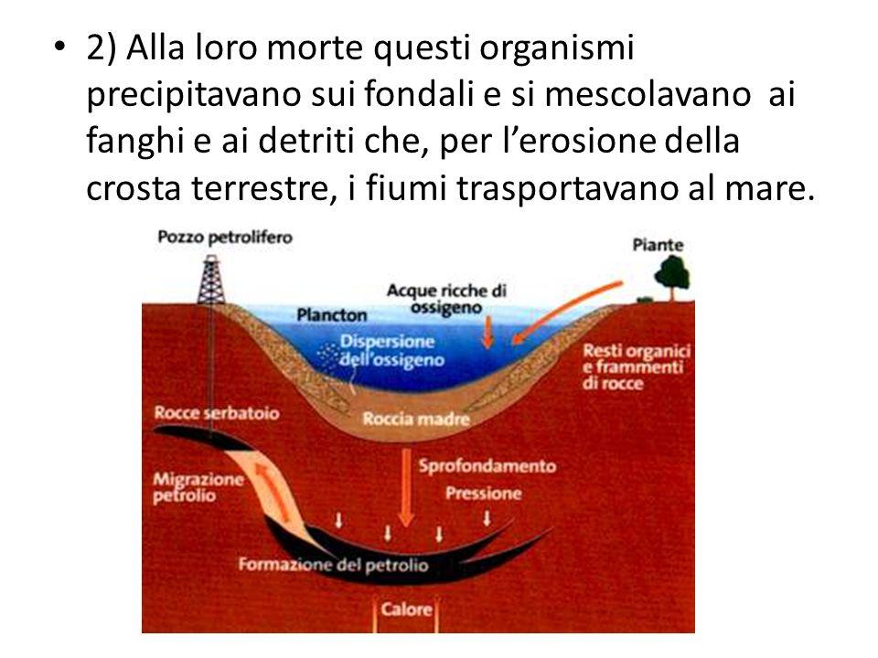 2) Alla loro morte questi organismi precipitavano sui fondali e si mescolavano ai fanghi e ai detriti che, per lerosione della crosta terrestre, i fiu