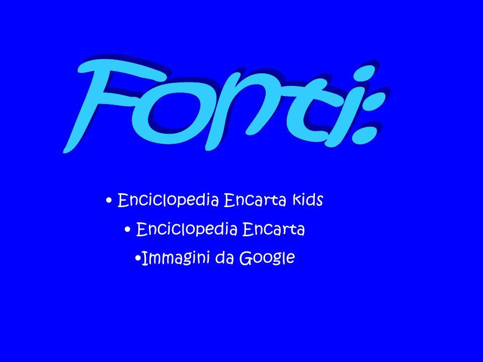 Enciclopedia Encarta kids Enciclopedia Encarta Immagini da Google