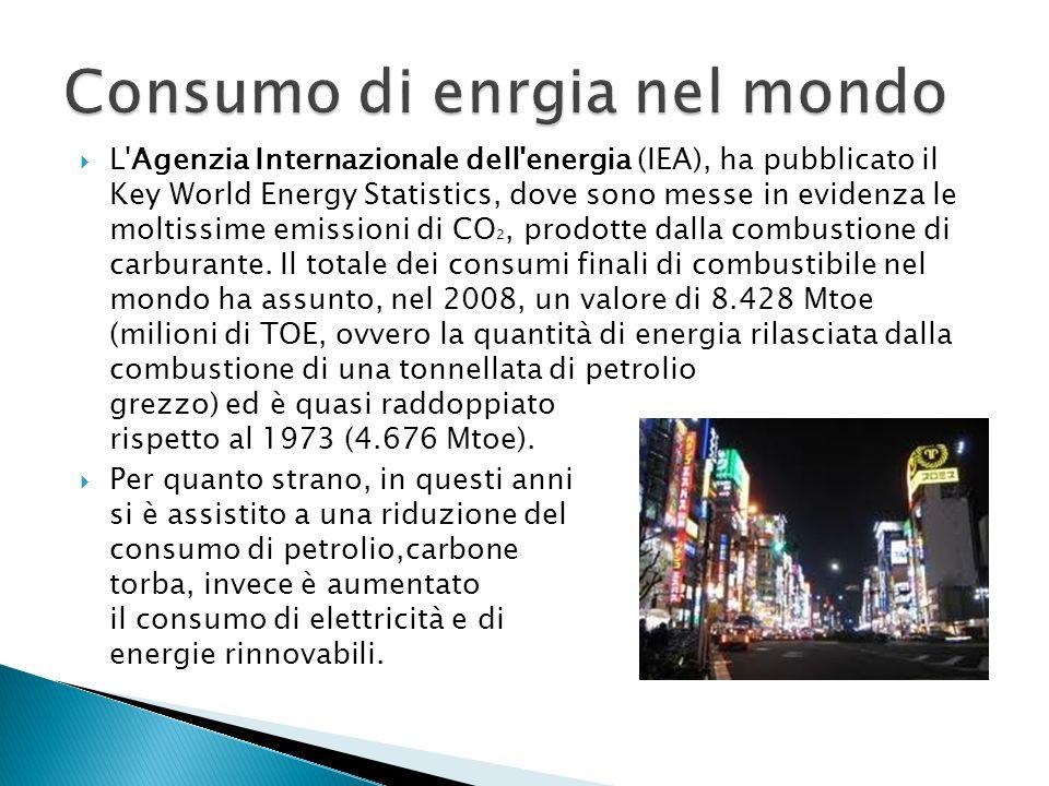 L Agenzia Internazionale dell energia (IEA), ha pubblicato il Key World Energy Statistics, dove sono messe in evidenza le moltissime emissioni di CO 2, prodotte dalla combustione di carburante.