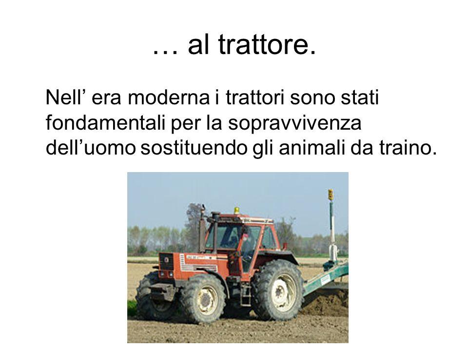 … al trattore. Nell era moderna i trattori sono stati fondamentali per la sopravvivenza delluomo sostituendo gli animali da traino.