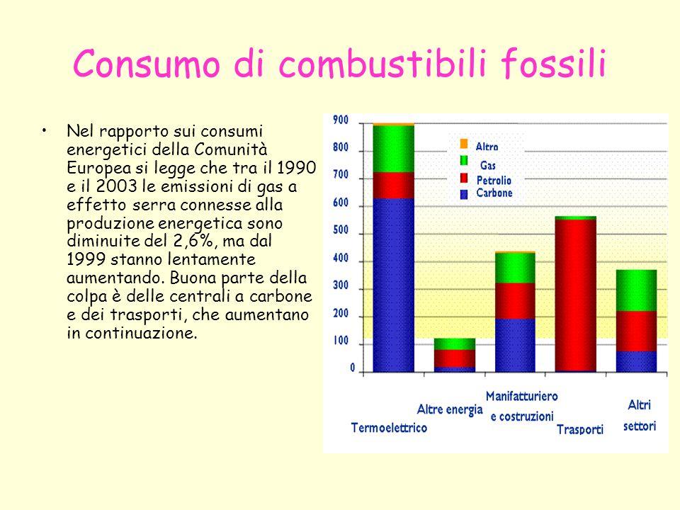 Consumo di combustibili fossili Nel rapporto sui consumi energetici della Comunità Europea si legge che tra il 1990 e il 2003 le emissioni di gas a ef