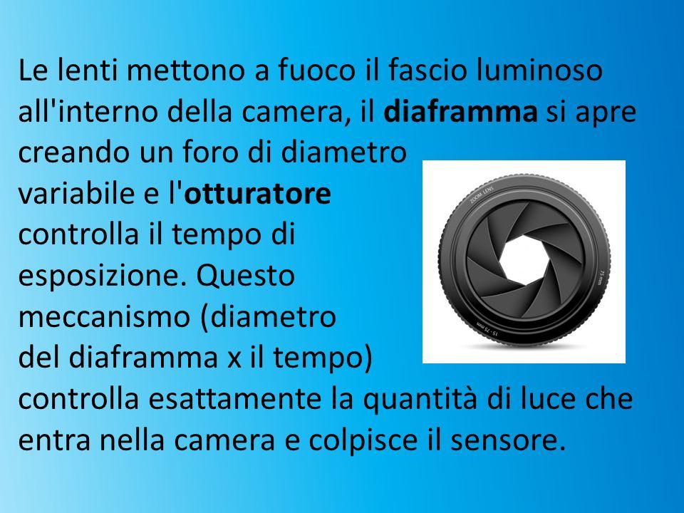 Le lenti mettono a fuoco il fascio luminoso all'interno della camera, il diaframma si apre creando un foro di diametro variabile e l'otturatore contro