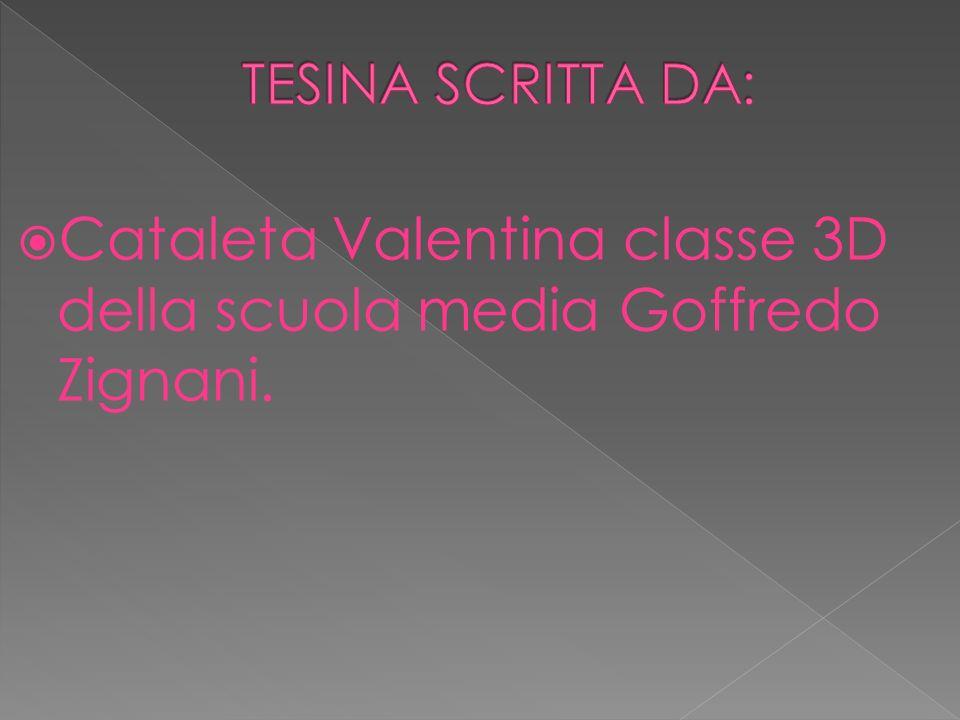Cataleta Valentina classe 3D della scuola media Goffredo Zignani.