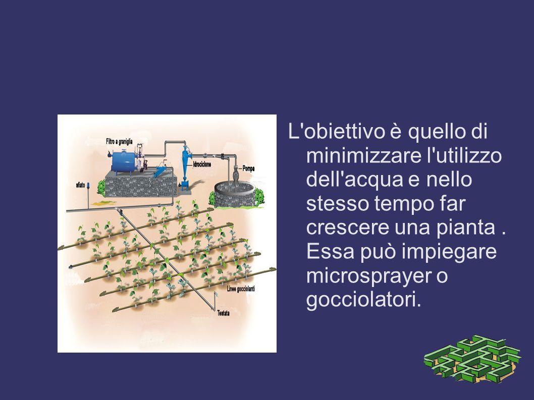 L'obiettivo è quello di minimizzare l'utilizzo dell'acqua e nello stesso tempo far crescere una pianta. Essa può impiegare microsprayer o gocciolatori