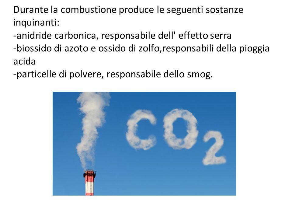 Durante la combustione produce le seguenti sostanze inquinanti: -anidride carbonica, responsabile dell effetto serra -biossido di azoto e ossido di zolfo,responsabili della pioggia acida -particelle di polvere, responsabile dello smog.
