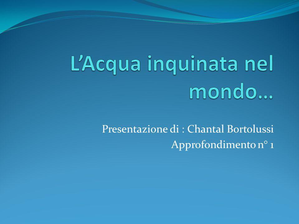 Presentazione di : Chantal Bortolussi Approfondimento n° 1