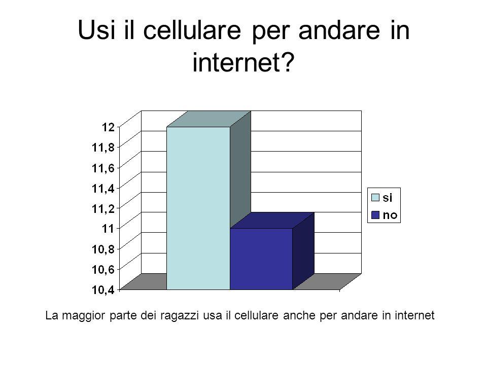 Usi il cellulare per andare in internet.