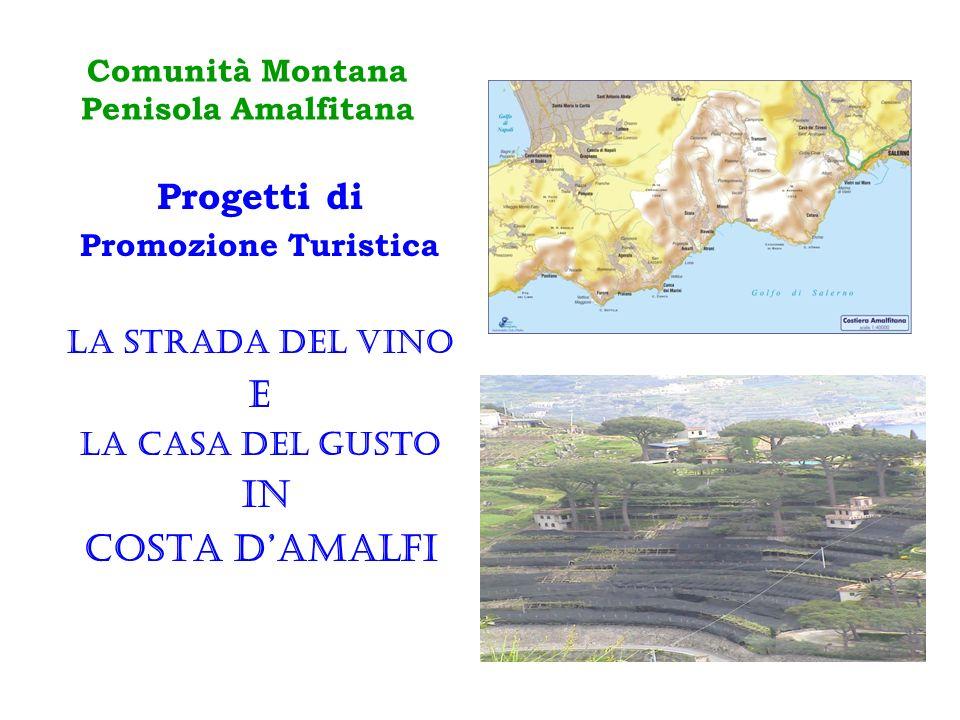 Comunità Montana Penisola Amalfitana Progetti di Promozione Turistica LA STRADA DEL VINO E LA CASA DEL GUSTO IN COSTA DAMALFI