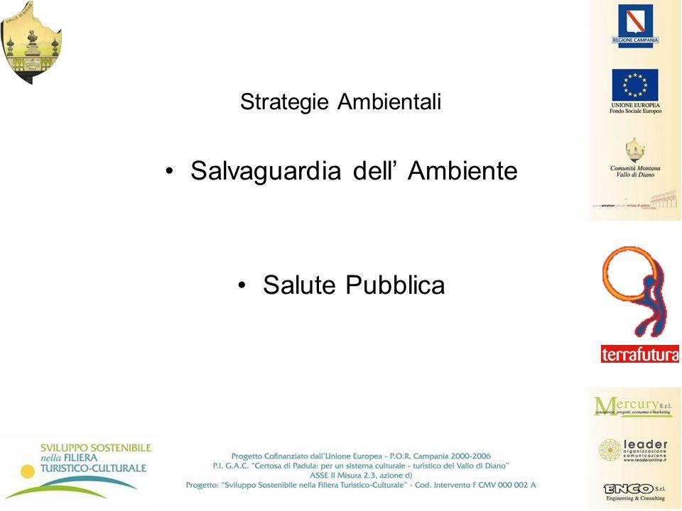 Strategie Ambientali Salvaguardia dell Ambiente Salute Pubblica