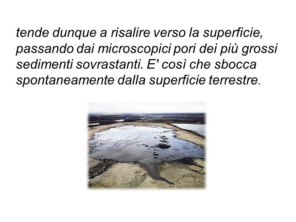 tende dunque a risalire verso la superficie, passando dai microscopici pori dei più grossi sedimenti sovrastanti.