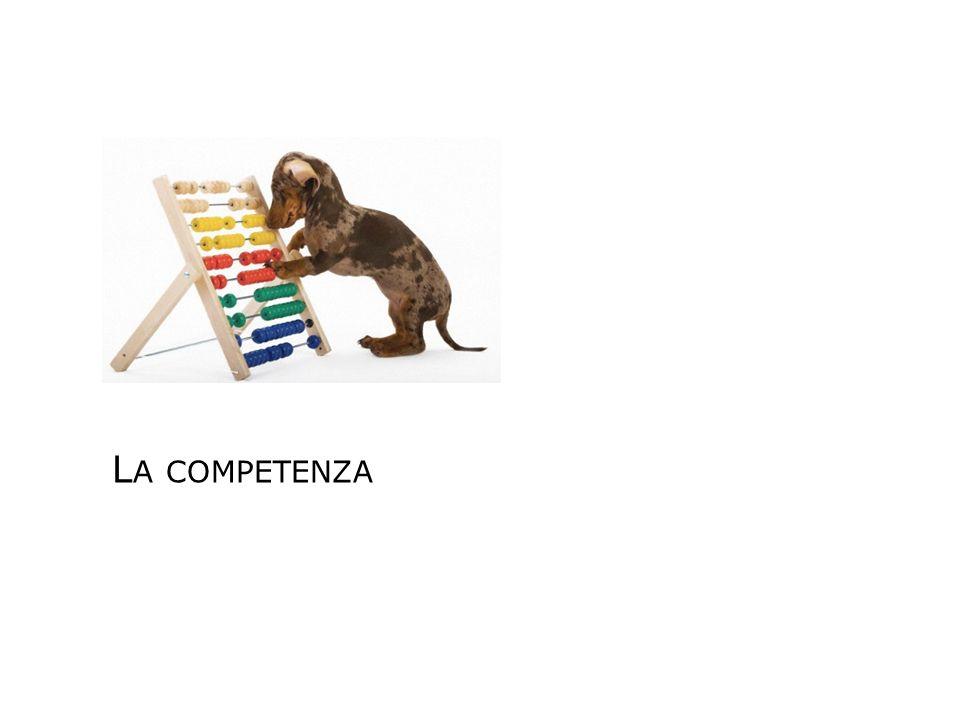 La didattica delle competenze Origine Dibattito europeo su istruzione-lavoro Riflessione pedagogico-didattica costruttivistica Caratteristiche Si basa su competenze osservabili e verificabili Si caratterizza per essere innovativa Prerogative della didattica delle competenze formare cittadini consapevoli, autonomi e responsabili; riconoscere gli apprendimenti comunque acquisiti; favorire processi formativi efficaci caratterizzare in chiave europea il sistema educativo italiano favorire la continuità tra formazione, lavoro e vita sociale; valorizzare la cultura viva del territorio La competenza