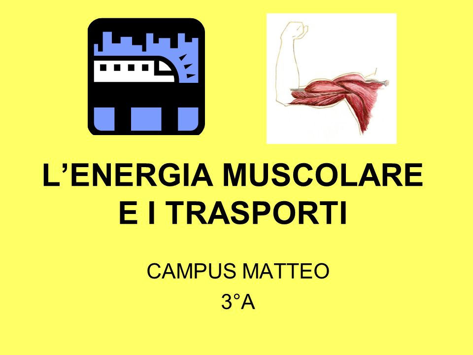 LENERGIA MUSCOLARE E I TRASPORTI CAMPUS MATTEO 3°A