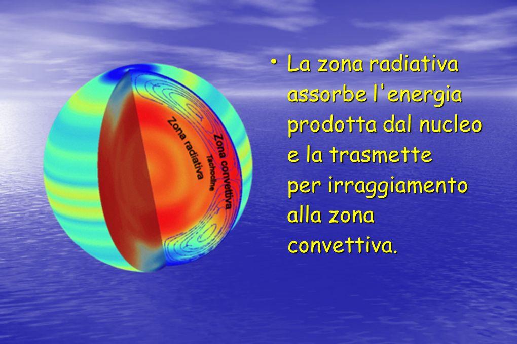 La zona radiativa assorbe l'energia prodotta dal nucleo e la trasmette per irraggiamento alla zona convettiva. La zona radiativa assorbe l'energia pro