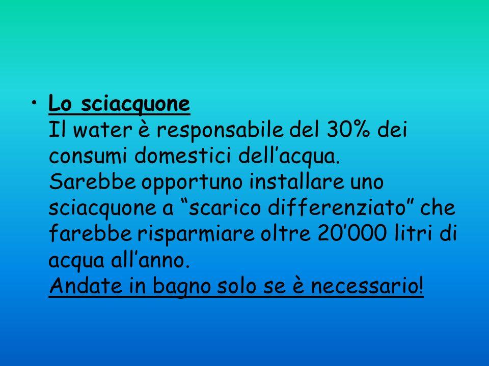 Lo sciacquone Il water è responsabile del 30% dei consumi domestici dellacqua. Sarebbe opportuno installare uno sciacquone a scarico differenziato che