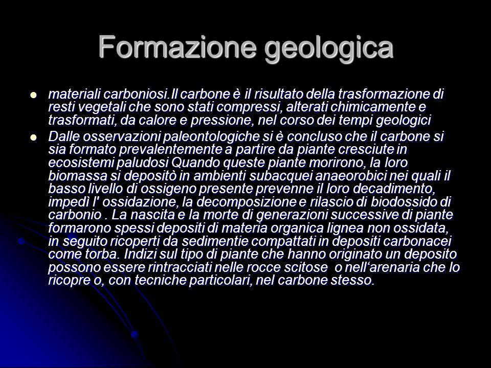 Formazione geologica materiali carboniosi.Il carbone è il risultato della trasformazione di resti vegetali che sono stati compressi, alterati chimicam