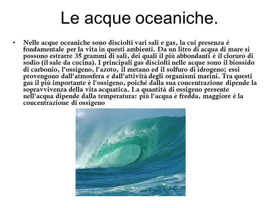 Le acque oceaniche. Nelle acque oceaniche sono disciolti vari sali e gas, la cui presenza è fondamentale per la vita in questi ambienti. Da un litro d