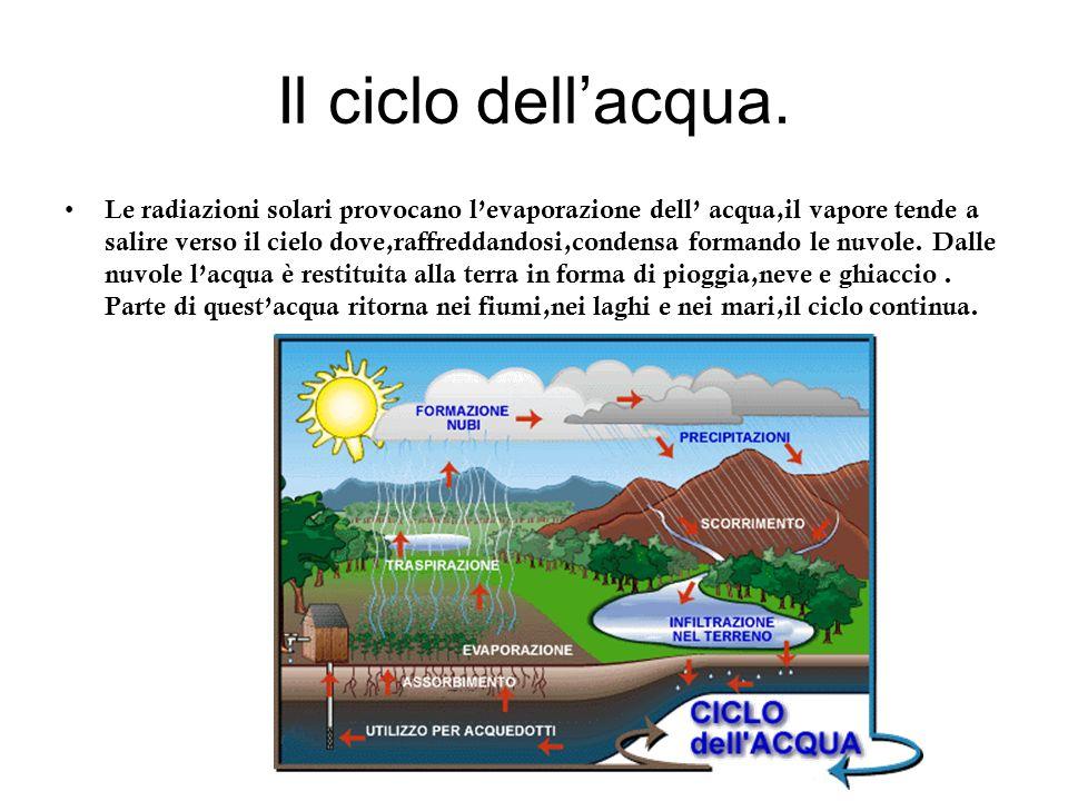 Il ciclo dellacqua. Le radiazioni solari provocano levaporazione dell acqua,il vapore tende a salire verso il cielo dove,raffreddandosi,condensa forma