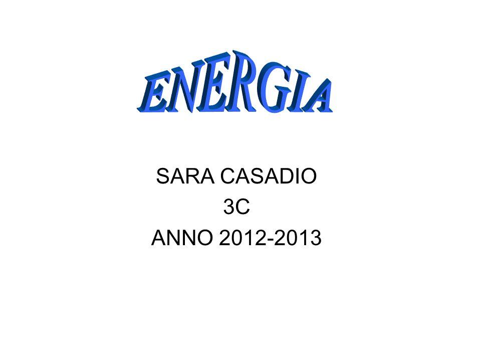 SARA CASADIO 3C ANNO 2012-2013
