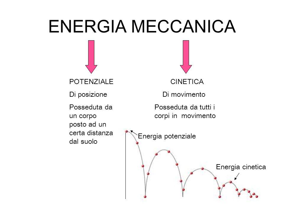 ENERGIA MECCANICA POTENZIALE Di posizione Posseduta da un corpo posto ad un certa distanza dal suolo CINETICA Di movimento Posseduta da tutti i corpi