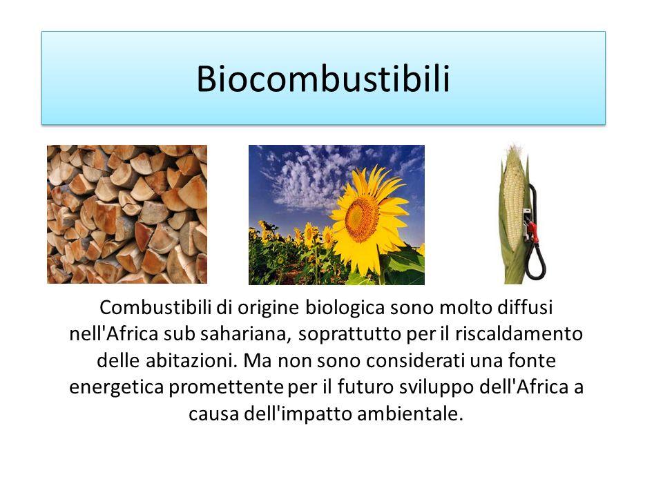 Biocombustibili Combustibili di origine biologica sono molto diffusi nell'Africa sub sahariana, soprattutto per il riscaldamento delle abitazioni. Ma