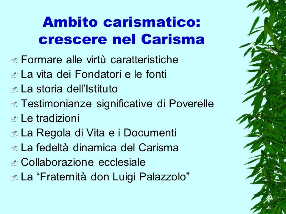Ambito carismatico: crescere nel Carisma Formare alle virtù caratteristiche La vita dei Fondatori e le fonti La storia dellIstituto Testimonianze sign