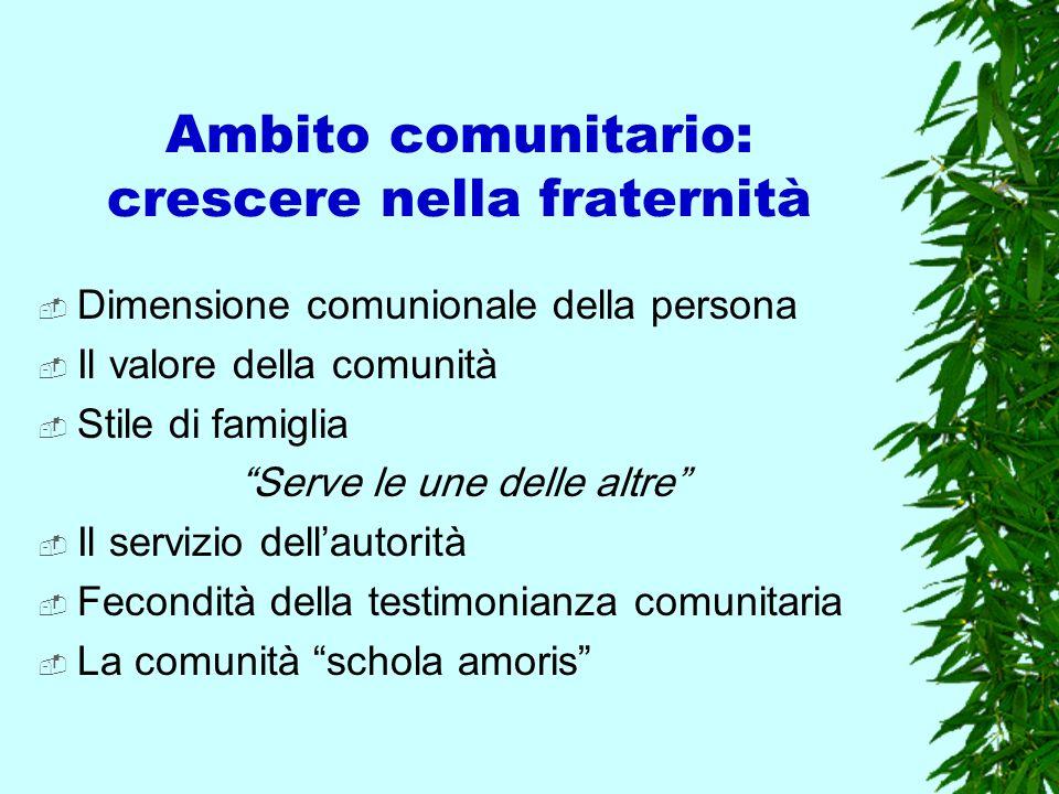 Ambito comunitario: crescere nella fraternità Dimensione comunionale della persona Il valore della comunità Stile di famiglia Serve le une delle altre