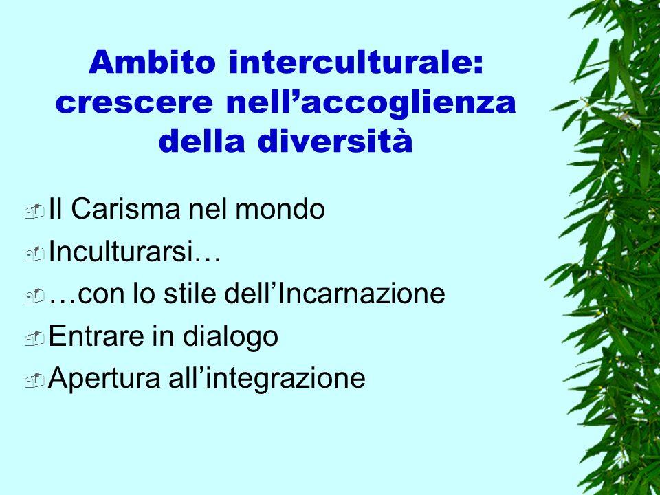 Ambito interculturale: crescere nellaccoglienza della diversità Il Carisma nel mondo Inculturarsi… …con lo stile dellIncarnazione Entrare in dialogo A