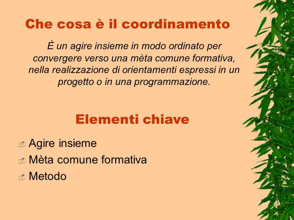 Che cosa è il coordinamento È un agire insieme in modo ordinato per convergere verso una mèta comune formativa, nella realizzazione di orientamenti es
