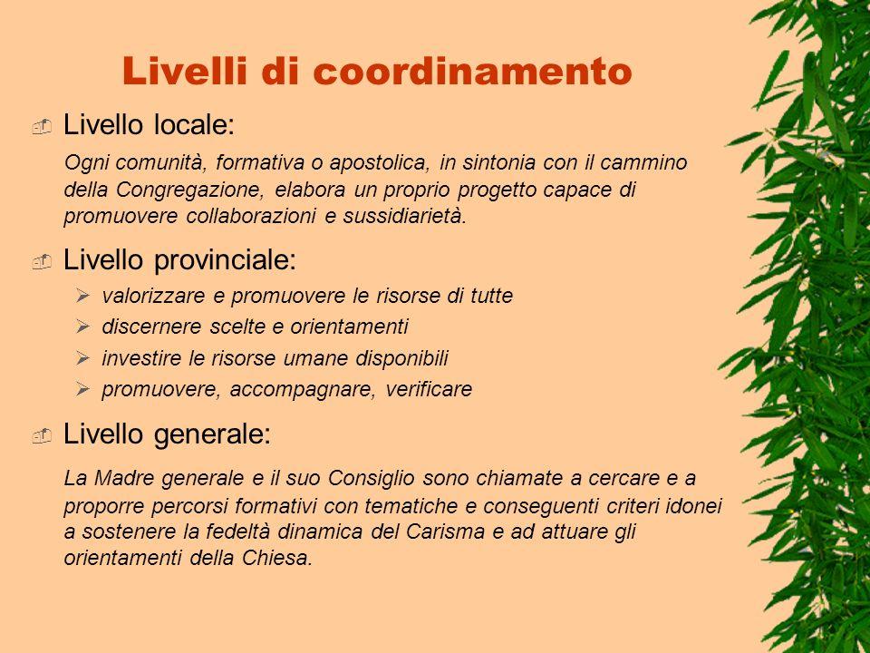 Livelli di coordinamento Livello locale: Ogni comunità, formativa o apostolica, in sintonia con il cammino della Congregazione, elabora un proprio pro
