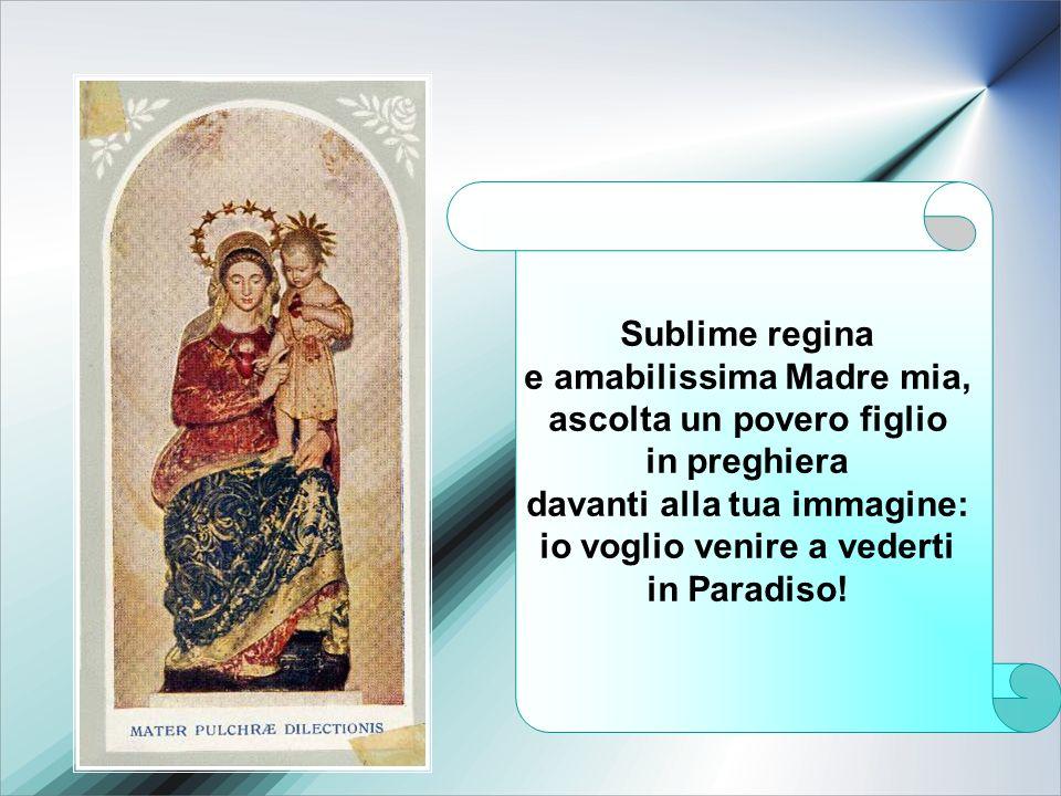 Sublime regina e amabilissima Madre mia, ascolta un povero figlio in preghiera davanti alla tua immagine: io voglio venire a vederti in Paradiso!