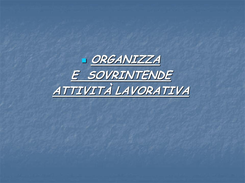 ORGANIZZA ORGANIZZA E SOVRINTENDE ATTIVITÀ LAVORATIVA