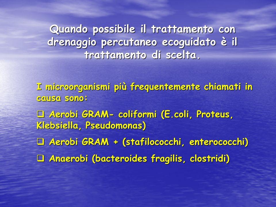 Quando possibile il trattamento con drenaggio percutaneo ecoguidato è il trattamento di scelta. I microorganismi più frequentemente chiamati in causa