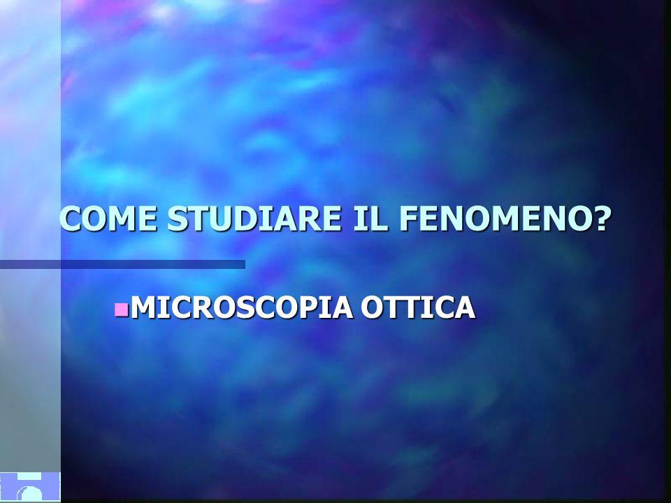 MONTECATINI 2005-XXIV NAZIONALE A.C.O.I.COME STUDIARE IL FENOMENO.
