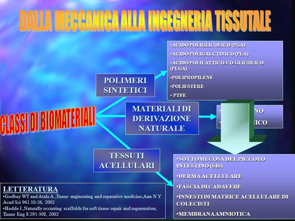 MONTECATINI 2005-XXIV NAZIONALE A.C.O.I. ADERENZE % di aderenze