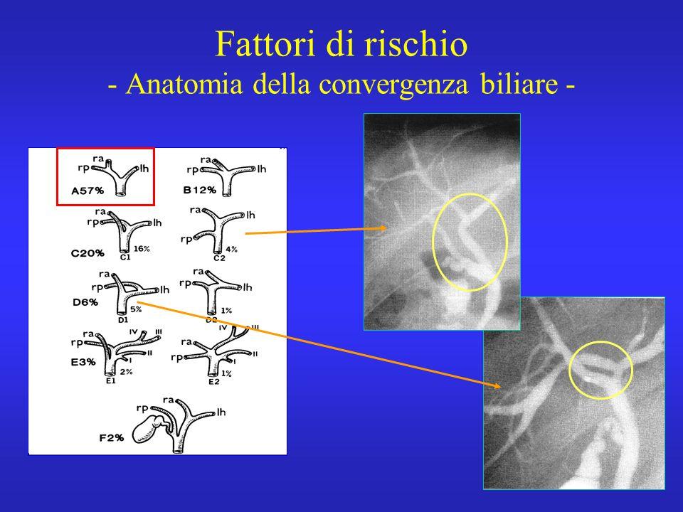 Fattori di rischio - Anatomia della convergenza biliare -