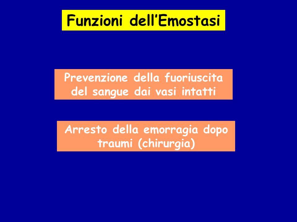 Funzioni dellEmostasi Prevenzione della fuoriuscita del sangue dai vasi intatti Arresto della emorragia dopo traumi (chirurgia)