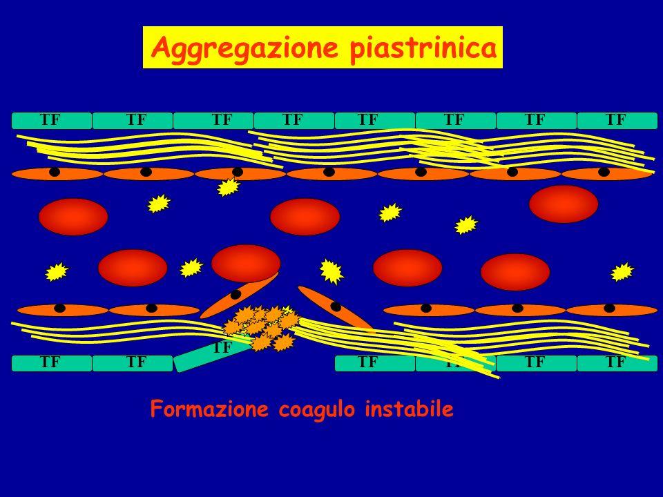 Aggregazione piastrinica Formazione coagulo instabile TF