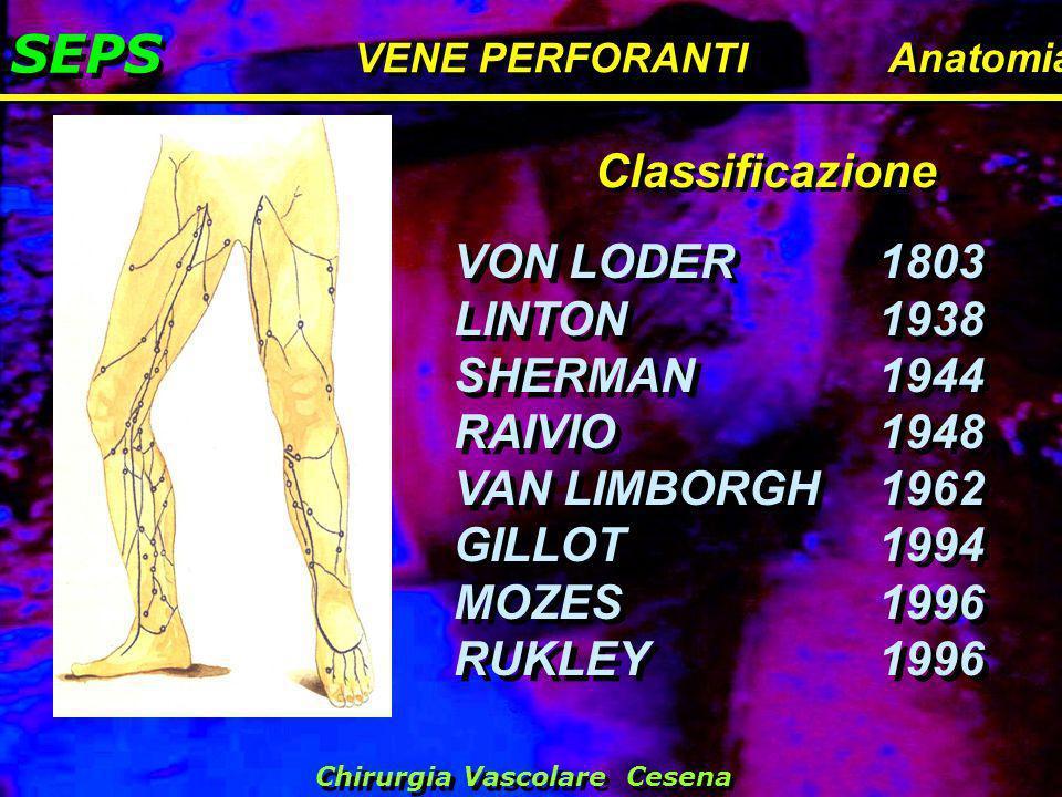 SEPS VENE PERFORANTI Anatomia VON LODER1803 LINTON1938 SHERMAN1944 RAIVIO1948 VAN LIMBORGH1962 GILLOT1994 MOZES1996 RUKLEY1996 VON LODER1803 LINTON193