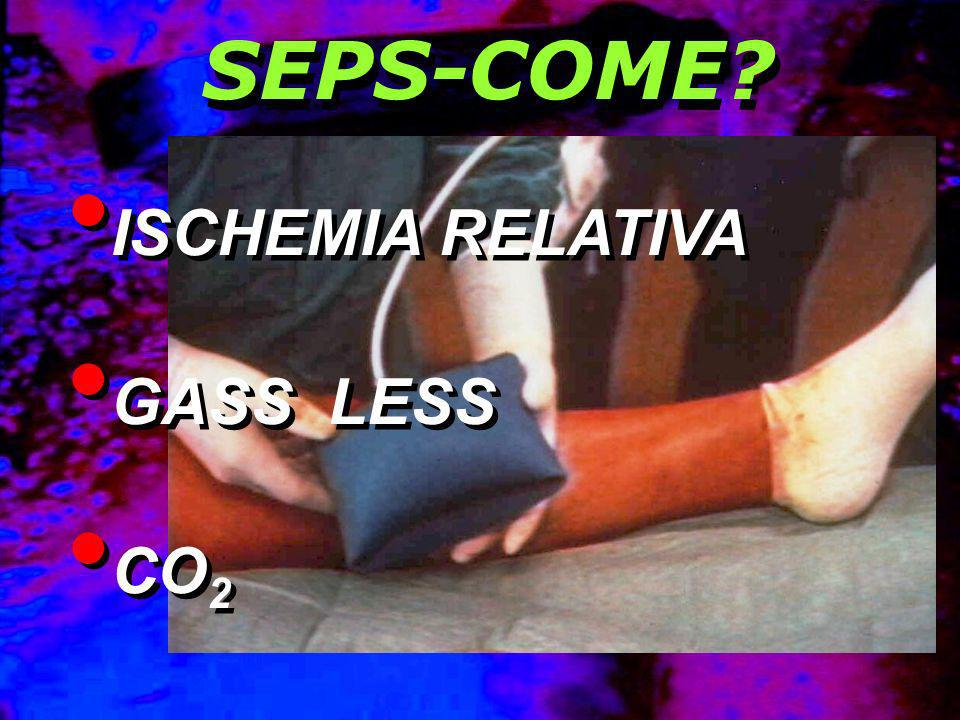 ISCHEMIA RELATIVA GASS LESS CO 2 ISCHEMIA RELATIVA GASS LESS CO 2 SEPS-COME?