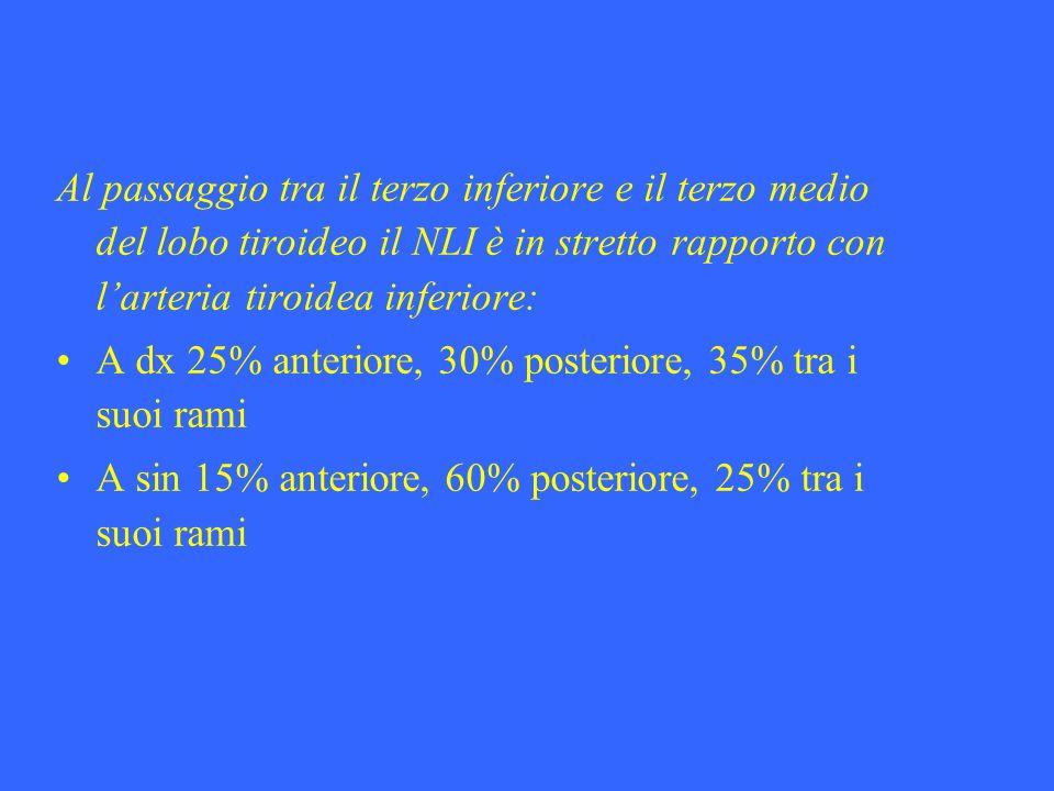 Al passaggio tra il terzo inferiore e il terzo medio del lobo tiroideo il NLI è in stretto rapporto con larteria tiroidea inferiore: A dx 25% anterior